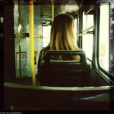 A woman's hair in the sunlight, on a bus.